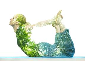 YogaWomanTrees